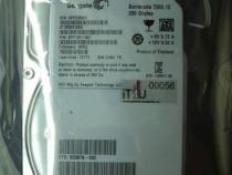 """Hard disk sata 3,5"""" hdd-250 gb seagate st32500312as"""