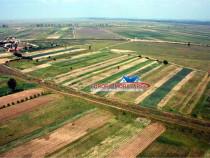 Teren agricol 8 ha loc. Salcioara