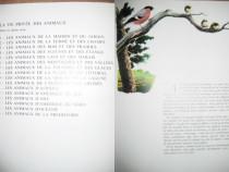 7778-Libraria Hachette Franta-Viata privata a Animalele 1975
