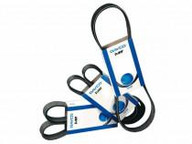 Curea accesorii / curea cu caneluri DAYCO - 6PK1760