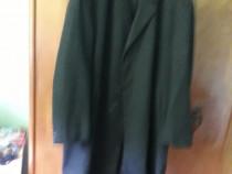 Palton captusit
