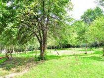 Teren intravilan Comarnic, zona Podu Lung, 2.550 mp