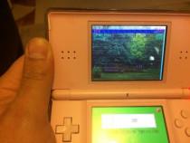 Consola Nintendo DS lite - Nintendogs card modat