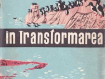 Rolul animalelor în transformarea naturii
