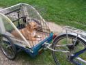 Remorca bicicleta.