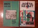 Judetul Neamt + Municipiul Piatra Neamt 1969 / C45P