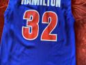Maieu Hamilton. Detroit Pistons