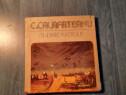 C. Calafeteanu Itineraire plastique album de arta