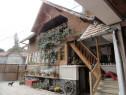 Casa ,vila 7 camere piscina, langa padure Codlea, Brasov