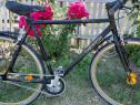 "Bicicleta 28"" CHRISSON FG FLAT 1.0 bărbătească"
