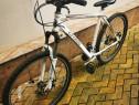 Bicicleta Cross Sultan