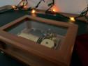 Reuge cutie muzicală Elveția
