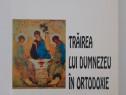 Dumitru staniloae trairea lui dumnezeu in ortodoxie