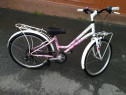 Bicicleta copii fetița și dama