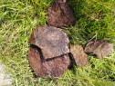 Piatră naturală soclu pavaje