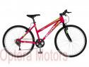 Bicicleta cu motor 2T 52cc Trekking 26″ RICH R2619A