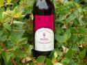 Vin vechi 1980-1999 (Colectie unica in Romania)