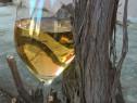 Vin rosu, alb și țuică facute in gospodărie
