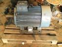 Motor electric trifazic  55 kw