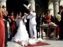 Porumbei albi pentru nunti botezuri pentru poze de neuitat