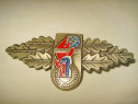 7677-Insigna Germania Tinerii Pompieri bronz emailat.