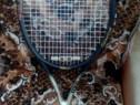 Rachetă tenis profesionala Wilson hammer titanium