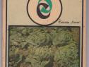 Cultura legumelor pemtru frunze de dr.ing.M.Voinea