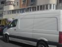 Transport Mărfuri Mutări Servicii de Alocării Moluz Gunoaie