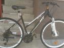 City Bike Treking aluminiu HT CROSS Line Sport de 26 import