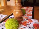 Sfesnic lemn fag