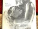 Sculpture 1976-1980, Mirella Guidetti Giacomelli