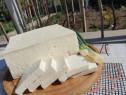 Brânză oaie