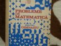 Probleme de matematica pentru gimnaziu-Ion Petrica