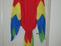 Costum papagal colorat