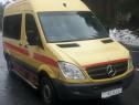 Transport animale de companie Ambulance Pet Taxi