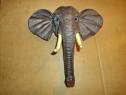C220- Cap Elefant prb mamut cu trompa si colti rasina.