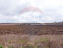 Teren extravilan de vanzare, 2 hectare