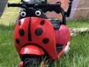 Tricicleta electrica HLW2988 (rosie)