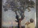 Album de arta pictura otto briese