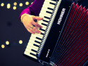 Lectii acordeon pe 4 dvd uri