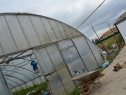Cautam femeie ziliera pentru lucru in solar si pepiniera