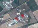 Teren 8 ha in Pecica - 15125