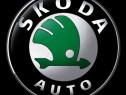 Decodare Skoda COD Radio RNS510 Columbus Bolero Swing Stream