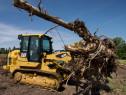 Defrisare si curatare terenuri