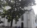 Pelerinaj in R. Moldova - 12 oct.,16 nov.,14 dec