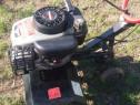 Motosapa Aratrum 3 motor Tecumseh