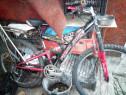 Bicicleta firstbike