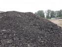 Frezat de asfalt