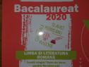 Bacalaureat 2020. Limba și literatura română.