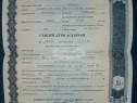 Certificat de acționar